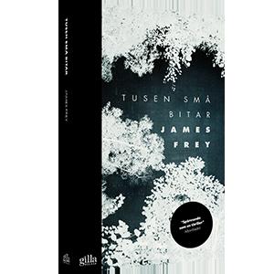 Book cover design Tusen små bitar